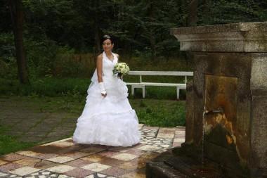 Nicoleta Zlatariu